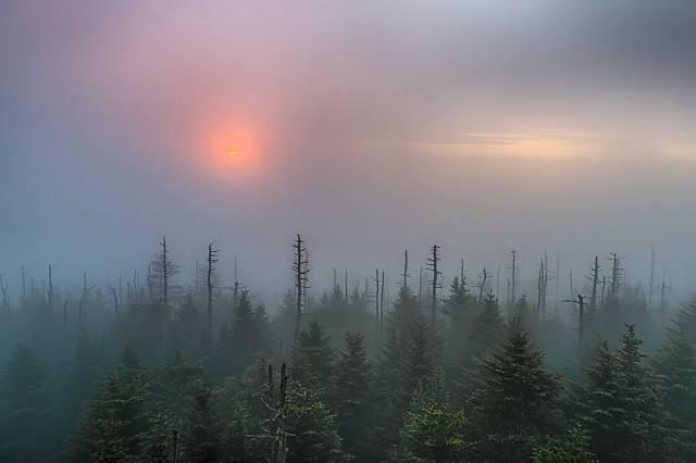 Sunrise-on-Clingmans-Dome-3