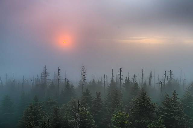Sunrise-on-Clingmans-Dome-3