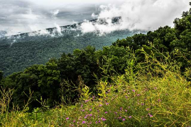 Cloudy-Day-in-Shenandoah-Mountains-2