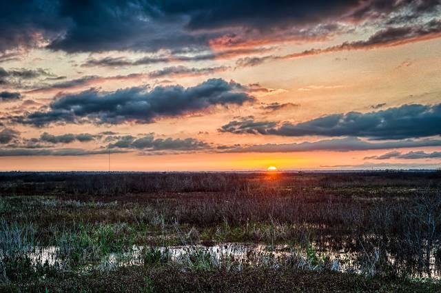 Paynes-Prairie-Sunset