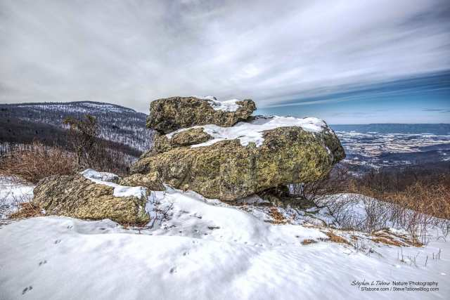 Cold-Winter-Overcast-Morning-in-the-Shenandoah-National-Park-2aa