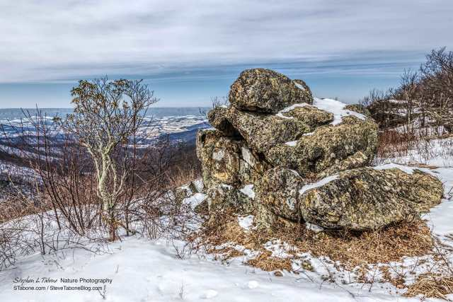 Cold-Winter-Overcast-Morning-in-the-Shenandoah-National-Park-3