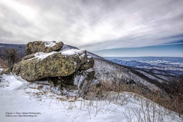 Cold-Winter-Overcast-Morning-in-the-Shenandoah-National-Park